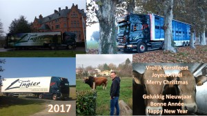 lingier_bestewensen_2017